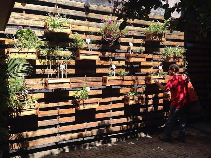 Horta Vertical Toca Ambiental